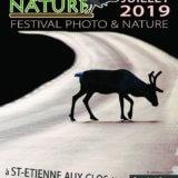Une image sélectionnée pour participer au prix du public du Festival « Signé Nature »