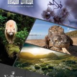 """""""La nature dans tous ses éclats"""" – Exposition avec le collectif Esprit Nature (Office de tourisme de Valberg)"""