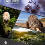 """""""La nature dans tous ses éclats"""" – Exposition avec le collectif Esprit Nature (Parc Phoenix (Nice)"""